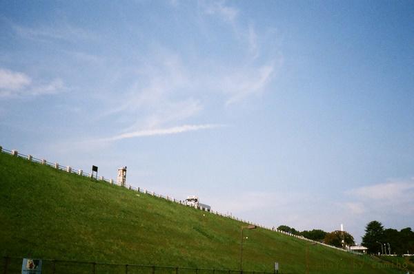 青い空、緑の堤防、これが多摩湖.jpg