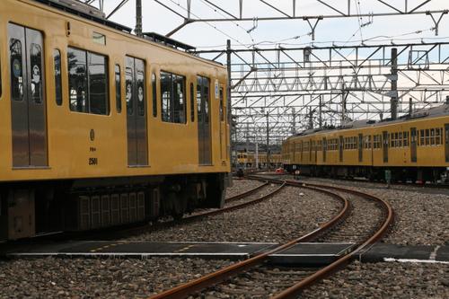 電車はいっぱい見れました。